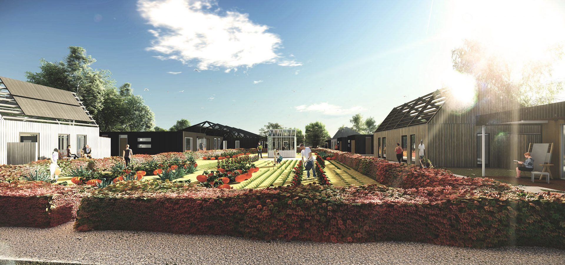 FARO architecten Buurtskap de Tuunen Texel 05