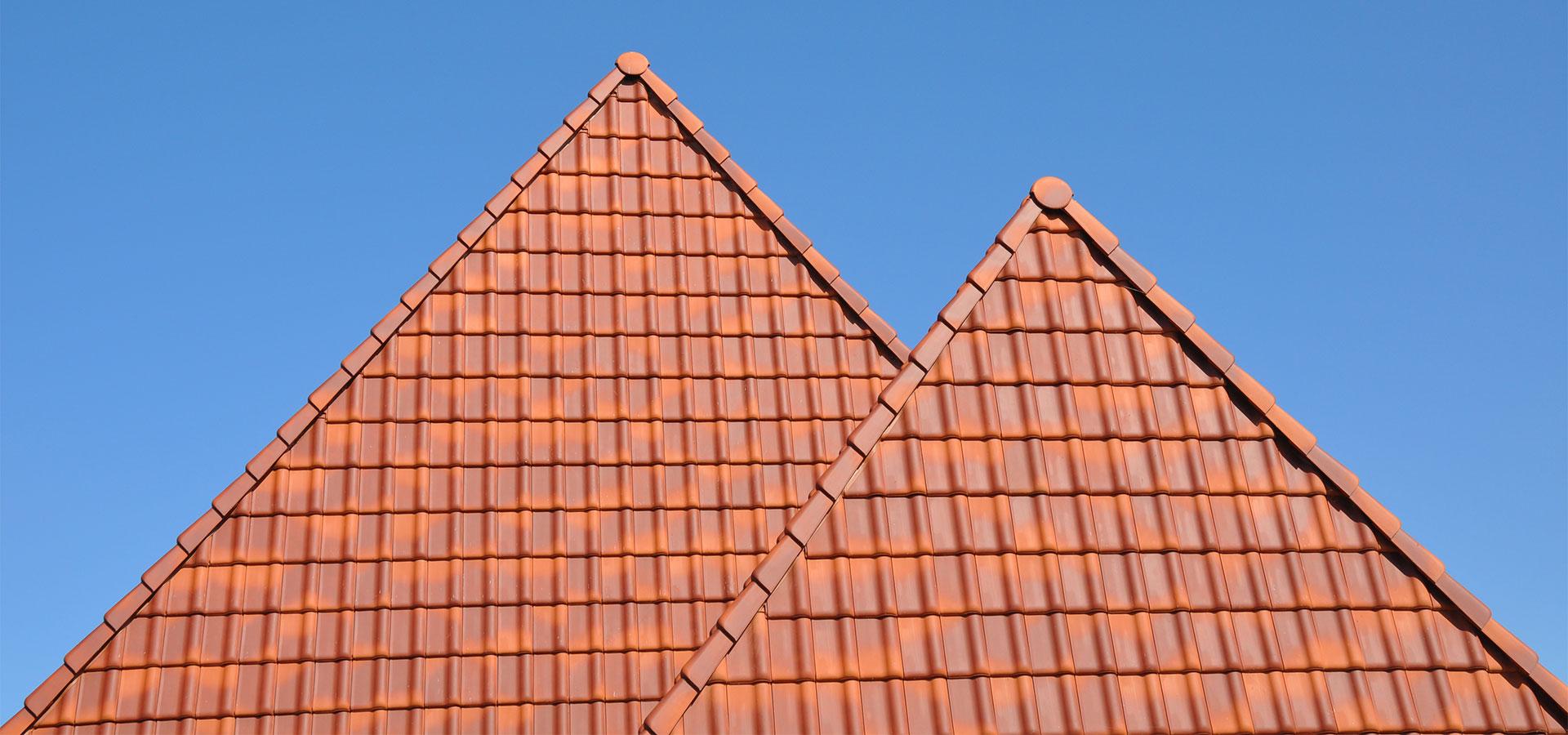 FARO architecten Twuyverhoek Sint Pancras 04